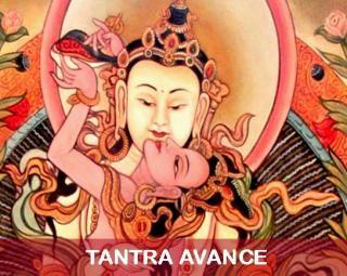 Tantraavance 4